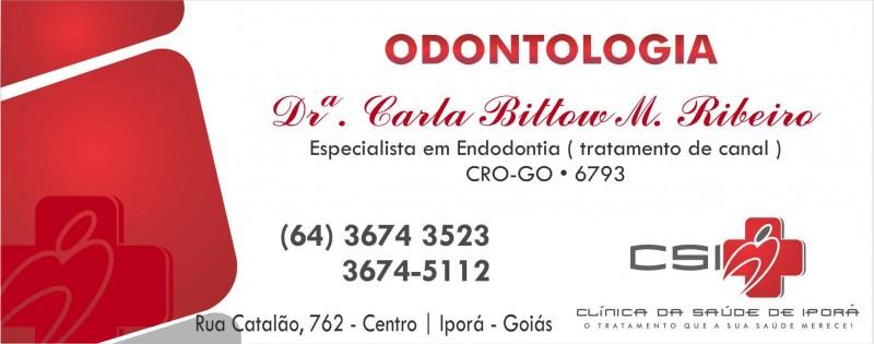 DRª CARLA BITTOW M. RIBEIRO