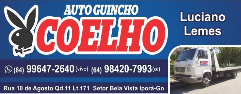 AUTO GUINCHO COELHO
