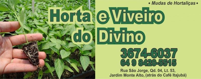 HORTA E VIVEIRO DO DIVINO